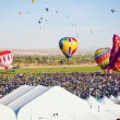Stock Photo: Hot Air Balloon Fiesta