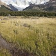 Stock Photo: Fitz Roy Range