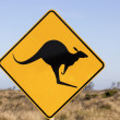 Jumping kangaroo sign — Stock Photo #26690253
