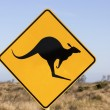 Jumping kangaroo sign — Stock Photo