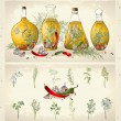 Illustration of spices, spicy herbs, olive oil. — Stok Vektör #28416143
