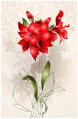 Beautiful greeting card with Amaryllis (Hipperastrum). Floral ba — Vetor de Stock