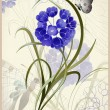 ストックベクタ: Greeting card with a flower and a butterfly. Floral background.
