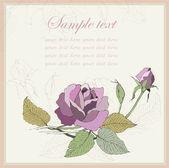 Greeting card with rose. Illustration  roses. Beautiful decorati — Stock Vector