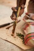 Cinnamon bark, Cinnamomi cortex — Stock Photo