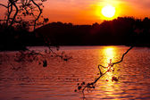 Sunset on the lake — Stock Photo