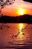 Atardecer en el lago — Foto de Stock