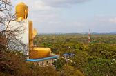 大きな金の仏像 — ストック写真