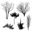 trees silhouettes — Stock Vector