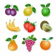Royalty-Free Stock Vector Image: Set of vector fruit