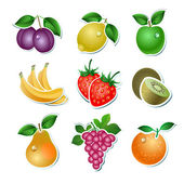 Set of vector fruit — Vector de stock