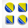 Bosnia and Herzegovina flag buttons — Stock Vector