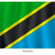 Tanzania flag — Stock Vector