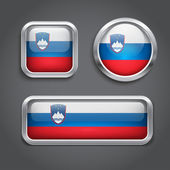 Slovenia flag glass buttons — Stock Vector