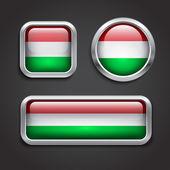 匈牙利国旗玻璃按钮 — 图库矢量图片