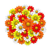 Vector flowers — Stock Vector