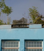 Fence and garden on a roof of a blue brick building near Tacoma town center — Stock Photo