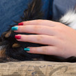 Sleepy Papillon under protection of colorful nails — Stock Photo #27176635