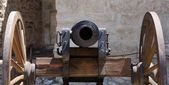 Alamo canon — Stock Photo