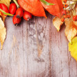 Autumnal border on wooden table, still life. — Stock Photo