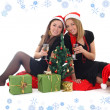 Two girls sitting and drinking champagne - Stock Photo