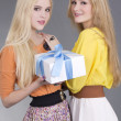 Portrait of two young women with a gift box — Stock Photo