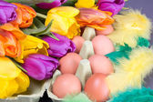 Easter eggs, tulips and feather — Stock Photo