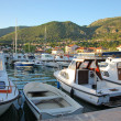 Small yachts and boats in harbour of Tivat — Stock Photo #26838205