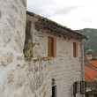 Little kitten on the roof of old building in Kotor — Stock Photo