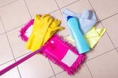 Cleaning products on the tile floor — Stock Photo