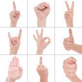 Collage of hand symbol isolated on white background — Stock Photo