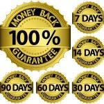 Money back guarantee golden set, vector illustration — Stock Vector