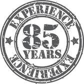 グランジ経験ゴム印、ベクトル図、八五年 — ストックベクタ