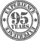 グランジ経験ゴム印、ベクター グラフィックの 95 年 — ストックベクタ