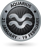 Aquarius zodiac silver sign, virgo symbol vector illustration — Stock Vector