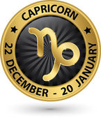 Capricorn zodiac gold sign, virgo symbol vector illustration — Stock Vector