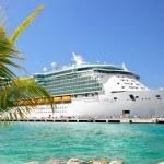 Cruise Ship — Stock Photo #23146976