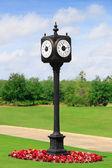 Outdoor Clock Post — Stock Photo