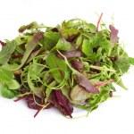 Mixed salad — Stock Photo #23322832