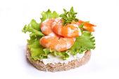 Shrimps appetizer — Stock Photo
