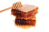 Panal con miel — Foto de Stock