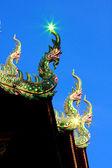 Naga ve yansıtıcı ışık — Stok fotoğraf