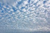 Altocumutus cloud — Stock fotografie