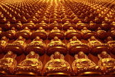 Gold chinese buddha image — Stock Photo
