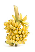 Banana bunch cluster — Stock Photo