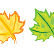 Royalty-Free Stock Векторное изображение: Hand drawing Maple leaf