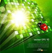 Vector abstract background with green cubes and ladybug — Stock Vector