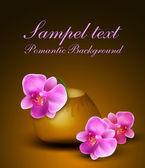 Vector fundo romântico com vaso e orquídeas — Vetorial Stock