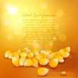 Vector corn on a gold background — Stock Vector #26972771