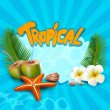 Vector tropical banner with seashells, starfish — 图库矢量图片